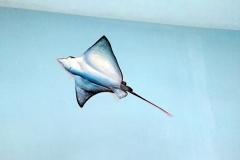 无锡墙绘-菠萝文艺-胜利门海底世界-15